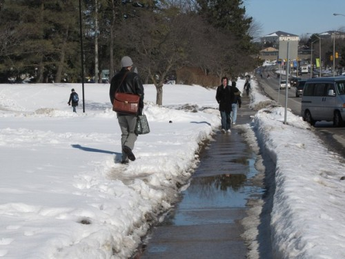 Detouring a puddle on a University Avenue sidewalk.